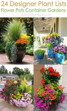 24 designer plant lists for beautiful container gardens & colorful mixed flower pots combinations: great patio planting ideas & backyard landscape designs! – A Piece of Rainbow gardening flowers patio 24 Stunning Container Garden Planting Ideas Full Sun Container Plants, Container Gardening Vegetables, Container Flowers, Planting Vegetables, Growing Vegetables, Vegetable Gardening, Succulent Containers, Garden Container, Patio Containers Ideas