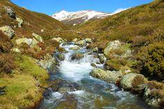 Inicia el río Carrión su recorrido por la provincia de Palencia después de nacer en la laguna de fuentes carrionas que se encuentra en el parque natural fuentes carrionas y fuentes cobre, montaña palentina.