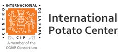International Potato Center