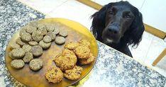 Galletas de arándanos, manzana, avena y plátano para perros y humanos (vegan)
