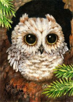 Wake Up Little Owl - cute watercolor art Carmen Medlin  If you've read my Haunted Churchyard book, you know about the Queen of the Night.  Wonder what would happen if there was a Princess of the Dusk who wanted to be friends with the mice?