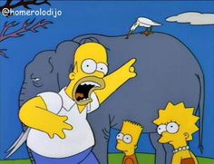 ¡Ése pájaro está matando a mi elefante!