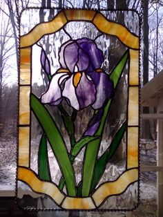 Bearded Iris stained glass