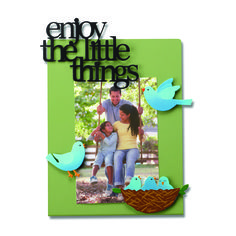 Create custom frames for all occasions.  Change out colorful magnets and favorite photos for unique year round displays.  Enjoy the little things and Bird Magnets from Embellish Your Story by Roeda.