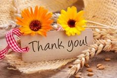 4 creative ways to say thank you - janina Thank You For Birthday Wishes, Thank You Wishes, Happy Birthday Celebration, Thank You Greetings, Happy Birthday Images, Thank You Cards, Thank You Qoutes, Thank You Messages Gratitude, Thank You Images