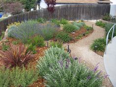 Yard ideas · The 2 Minute Gardener: Photo - Decomposed Granite Pathway (DG) Decomposed Granite Patio, Flagstone, Crushed Granite, Drought Tolerant Landscape, Front Yard Design, Front Yard Landscaping, Landscaping Ideas, Garden Paths, Outdoor Gardens