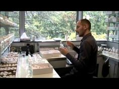 Short video by Givaudan that introduces their perfumery school. This segment was part of the 2011 documentary on perfumes by the BBC.