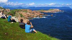 Experience the beauty of Nova Scotia through hiking Cape Breton, sightseeing the Cabot Trail & whale watching, Lunenburg history tour, Peggy's cove & more. Cabot Trail, Hiking Tours, Cape Breton, New Brunswick, Adventure Tours, Whale Watching, Travel And Leisure, Nova Scotia, Walking Tour