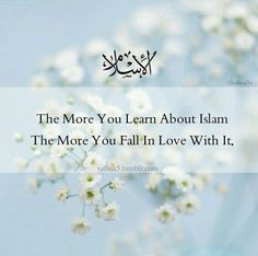 The more you learn about Islam, the more you fall in love with it.
