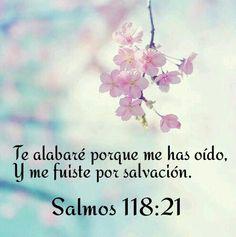 Salmos 118:21 Te alabaré porque me has oído, y me fuiste por salvación.♔