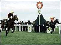 Horse Racing, Race Horses, Grand National, Hurdles, Big Black, Great Britain, Kangaroo, Rum, New Zealand