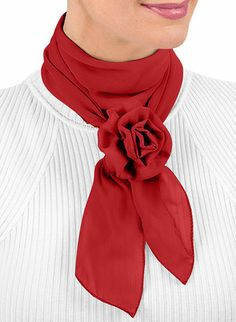 Scarf with Clip at www.amerimark.com  6.99