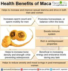 Health benefits of maca include relief from problems related to menstruation and menopause, while balancing hormones and boosting fertility in women. It helps in increasing energy levels, improving sexual health and bone health. Maca helps in building stamina, maintaining healthy immune system and healthy skin. It has antidepressant properties and under stress conditions it promotes homeostasis or balance within the body