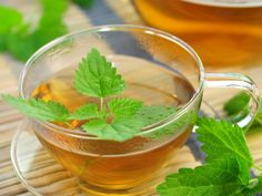 Nettle tea is often prescribed by doctors to improve kidney disease patients renal function. How does nettle leaf tea increase kidney function? In this article, you will learn the relation between nettle tea and kidney function. Nettle and Body Detox Drinks, Detox Your Body, Improve Kidney Function, Kidney Friendly Foods, Allergy Remedies, Cure Diabetes, Natural Home Remedies, Detox Tea, Healthy Nutrition