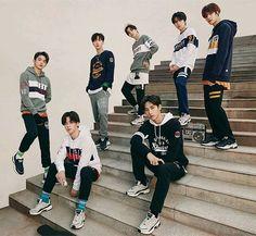 Winwin, Nct 127 Johnny, Nct U Members, Friend Zone, Kpop Boy, Asian Men, Taeyong, K Idols, Jaehyun
