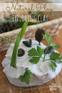Exploring Clay and items from nature. What a great sensory play idea. This would make a lovely quiet time activity.