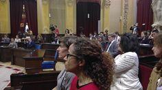 Conference, The Selection, Spain, Youth, Dreadlocks, Hair Styles, Beauty, Hair Plait Styles, Sevilla Spain