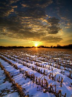 """Winter's Sleep""  Horizons by Phil Koch  Milwaukee, Wisconsin"