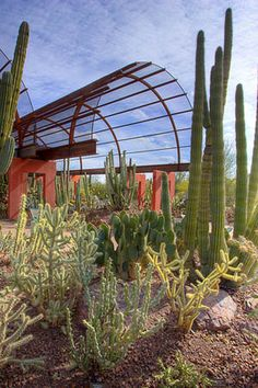 10 Favorite Tourist Attractions in Phoenix (That Are Still Fun for Locals) - Jackalope Ranch