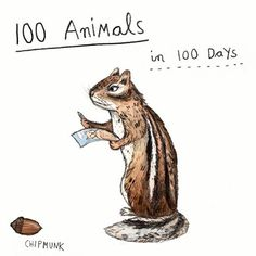I'm embarking on a personal illustration challenge drawing 100 animals in 100 days! I want to push my daily drawing and see how my work will evolve. These will be relatively quick drawings as I have tons of other work on and should be really fun. I would love for you to get involved and leave me a comment every day with suggestions for animals to draw the next day :-) . . . #dailydrawing #illustration #drawing #animals #100animals100days #pencil #watercolour #chipmunk #sandradieckmann #art…