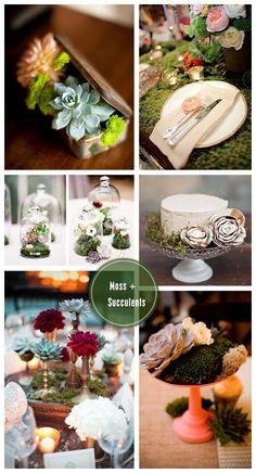 bottom left, minus the light green succulent...metallic candle stick holders and moss at base...Moss + Succulent: Wedding Inspiration