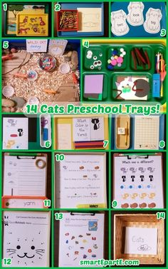 A cool sensory bin, adaptable craft and many great printables are in this set of Cats Preschool Trays!
