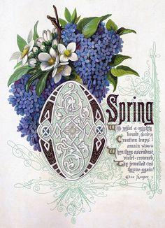 Landofnodstudio's: Free Photo Friday Spring and Summer Flowers