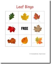 Leaf Bingo and Nature observation sheet printables