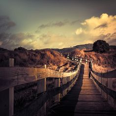 Cuba Gallery: Beach / New Zealand / landscape / wood / clouds / sky / people / pathway / photo / photography. Picture by Andrew.