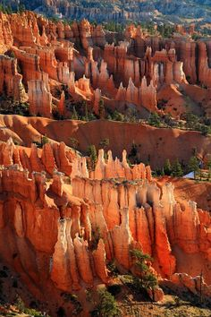 Hoodoos of Sunset Point in Bryce Canyon, Utah