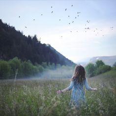 walk in meadow