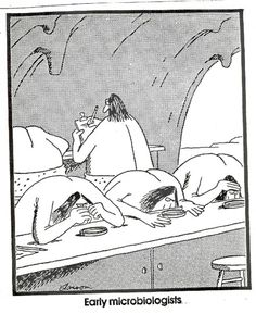 The Far Side comics by Gary Larson