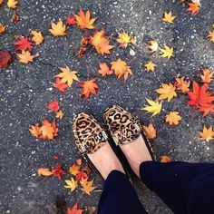 The Dylan leopard loafers, now on #sale on Joie.com!