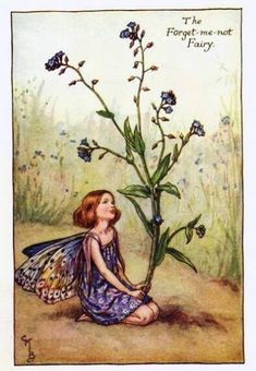 Forget-me-Not Summer Flower Fairy