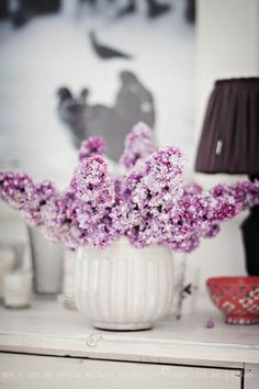 Lilacs in white pot.  Miss Small - my daily life: lilac and rhubarb time