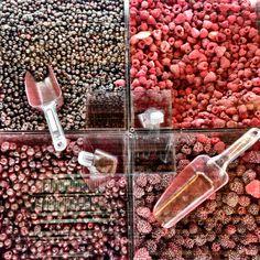 bulk berries!