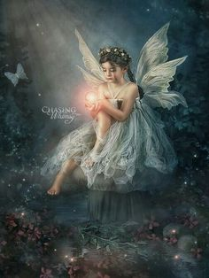 Fairy Portrait by Chasing Whimsy Fairy Pictures, Angel Pictures, Baby Fairy, Love Fairy, Magical Creatures, Fantasy Creatures, Fairy Photoshoot, Fairy Photography, Fairies Photos