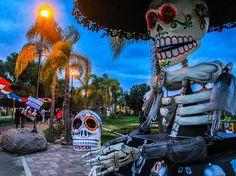 """""""Día de muertos"""" es quizá hoy en día la festividad que más identidad le da a los mexicanos"""