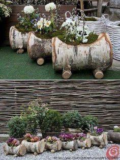 Con troncos