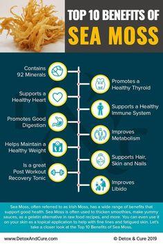 Sea Moss in your diet