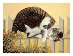Cats & Kittens, Prints and Posters at Art.com