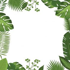 Lovely frame border of green tropical palm leaves for scrapbooking, etc Invitation Cards, Invitations, Invitation Ideas, Green Grass Background, Tropical Frames, Moana Birthday Party, Leaf Border, Borders And Frames, Tropical Design