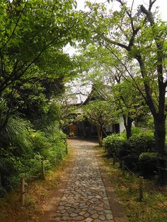 Path to The Traditional Japanese House