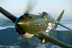 P-40 Fighter Aircraft