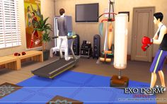 "from the lot ""EXO Dorm (No CC)"" Fitness Room"