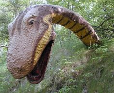 The Prehistoric Forest, located in the Irish Hills, of Lenawee County, in southeastern Michigan. Closed...