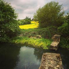 Canal walk #southyorkshire #yorkshire #england Barge Boat, Canal Barge, South Yorkshire, Yorkshire England, Kingdom Of Great Britain, English Countryside, London Calling, British Isles, London England