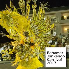Bahamas Junkanoo Carnival established itself as a wholesome event with the perfect dose of music, culture and vibes. Most important are feather attires for carnivals using feathers in natural and dyed form. #feathers #carnivalfeathers #bahamas #junkanoocarnival  Visit for feathers : www.schumanfeathers.com