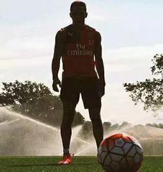 Alexis #Arsenal Arsenal Fc, Real Soccer, Soccer Fans, Alexis Sanchez, Soccer Inspiration, Arsene Wenger, Gareth Bale, Fa Cup, Sports