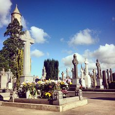 Fresh Flowers and Wreaths on the grave of Michael Collins, this morning in Glasnevin.